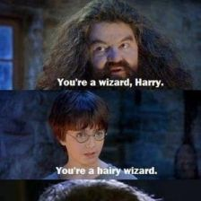 youre-a-harry-wizard_fb_1106890